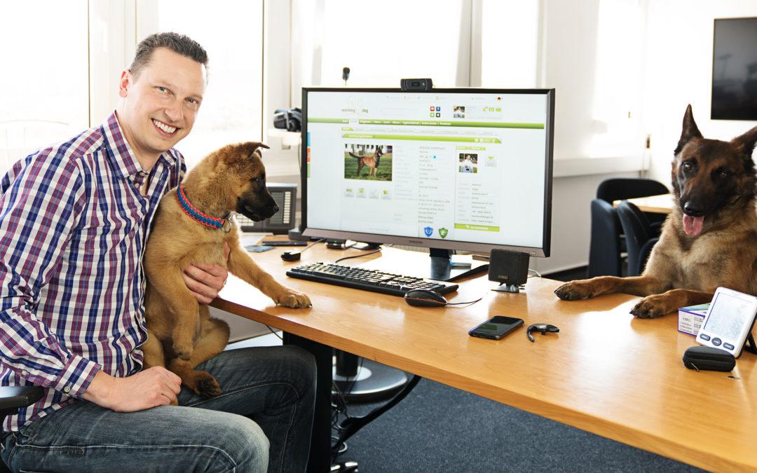 Die internationale Hundesportplattform working-dog.